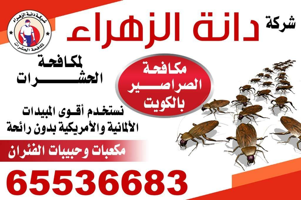 مكافحة الصراصير 65536683 بالكويت