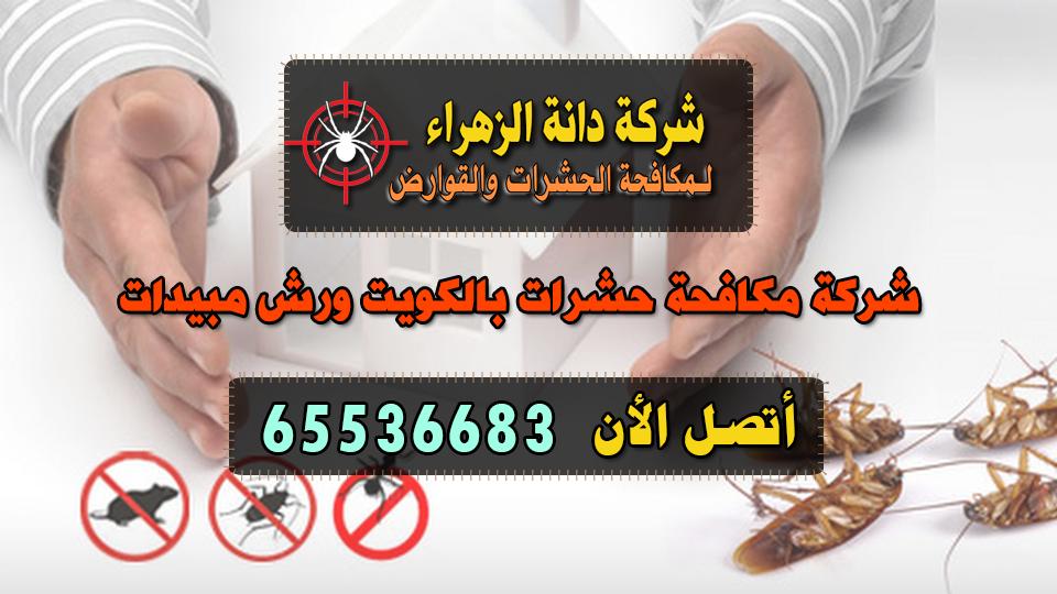 شركة مكافحة حشرات بالكويت ورش مبيدات