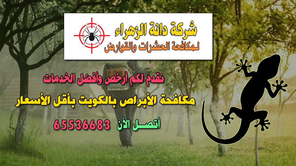 مكافحة الأبراص بالكويت 65536683 بأقل الأسعار