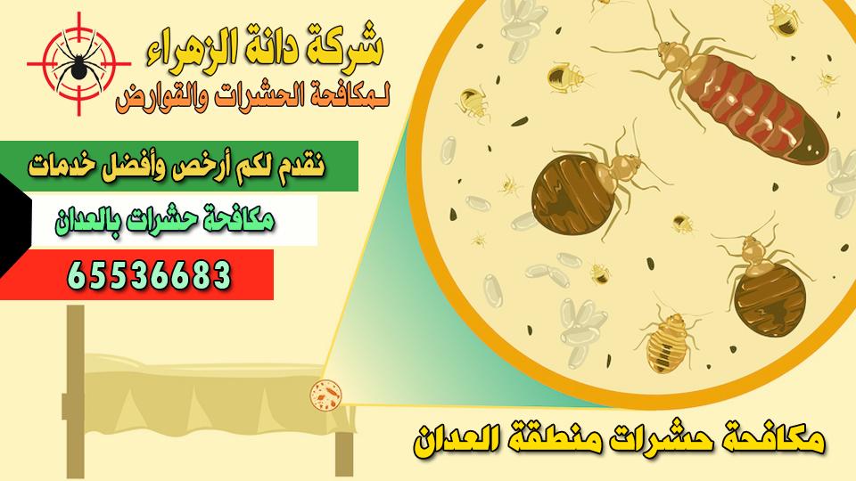 مكافحة حشرات العدان 65536683