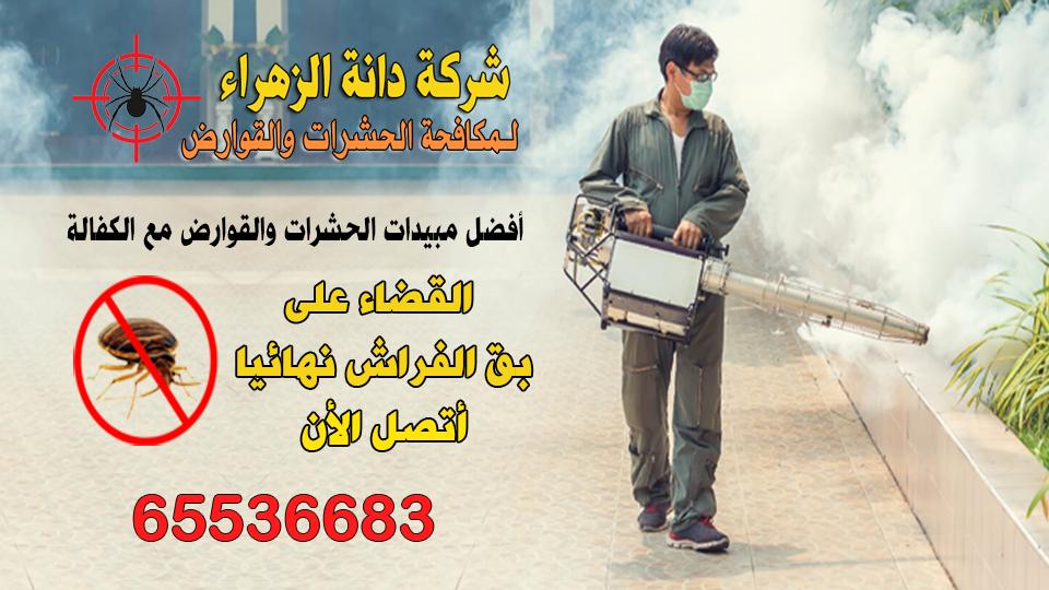 مكافحة حشرات وقوارض الجهراء 65536683