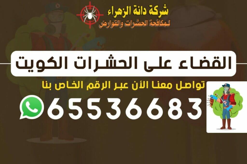 القضاء على الحشرات 65536683 الكويت