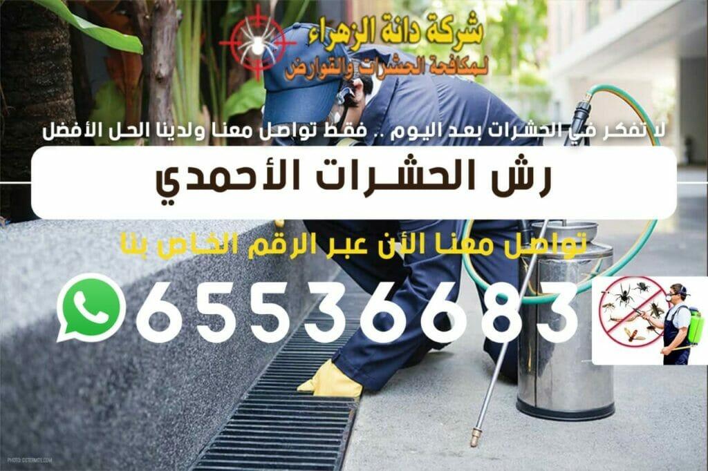 رش الحشرات الأحمدي 65536683
