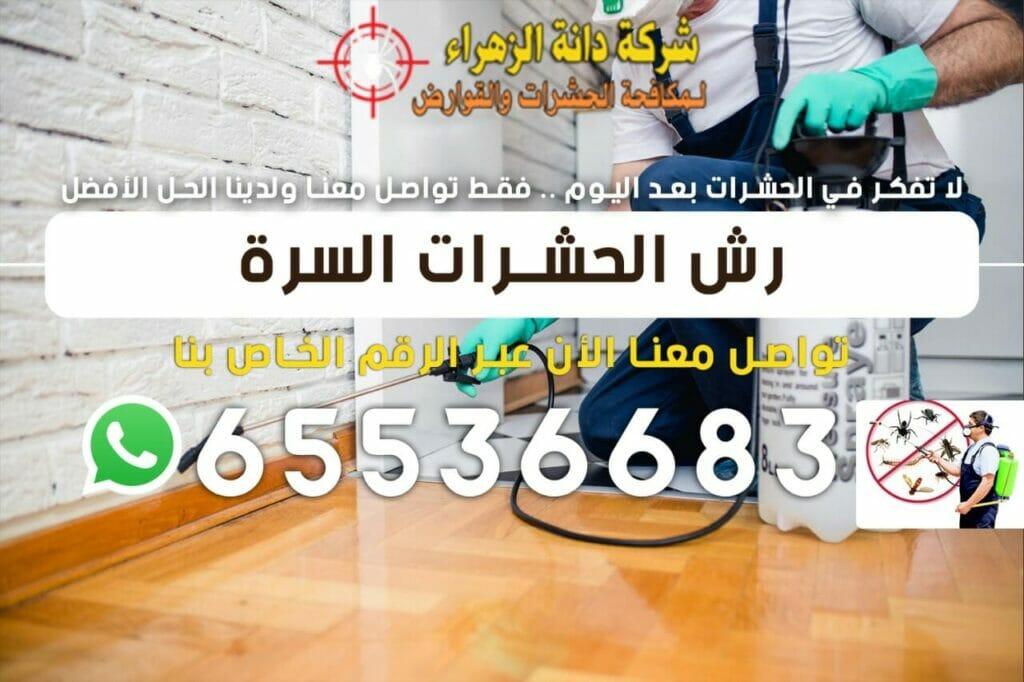 رش الحشرات السرة 65536683