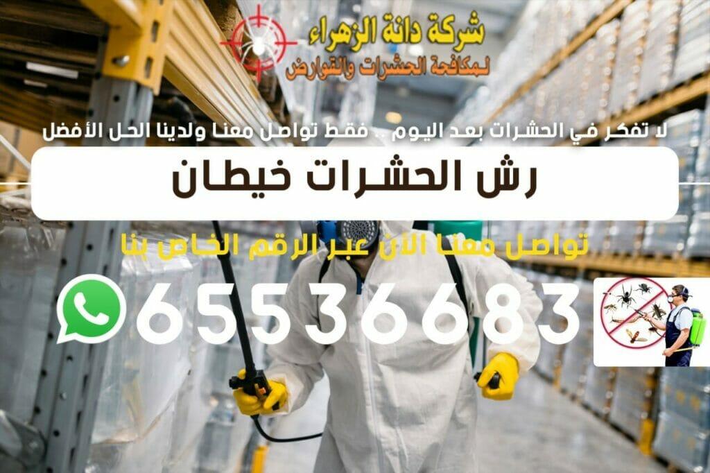 رش الحشرات خيطان 65536683