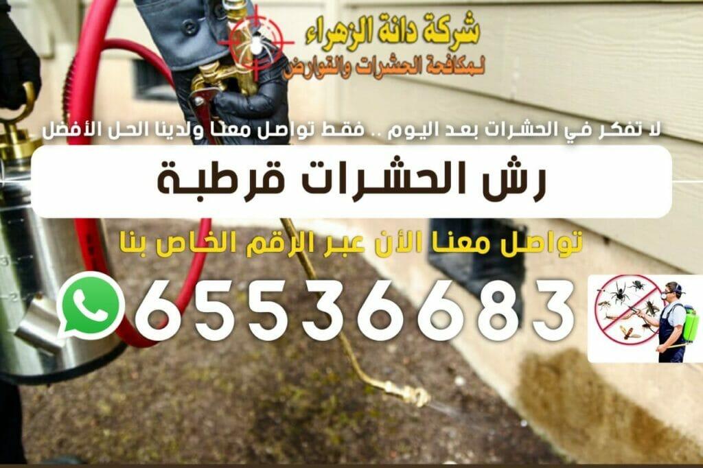 رش الحشرات قرطبة 65536683