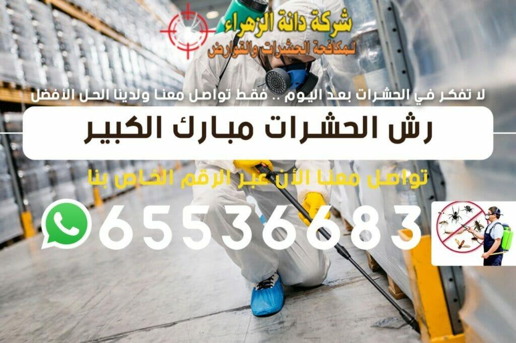 رش الحشرات مبارك الكبير 65536683
