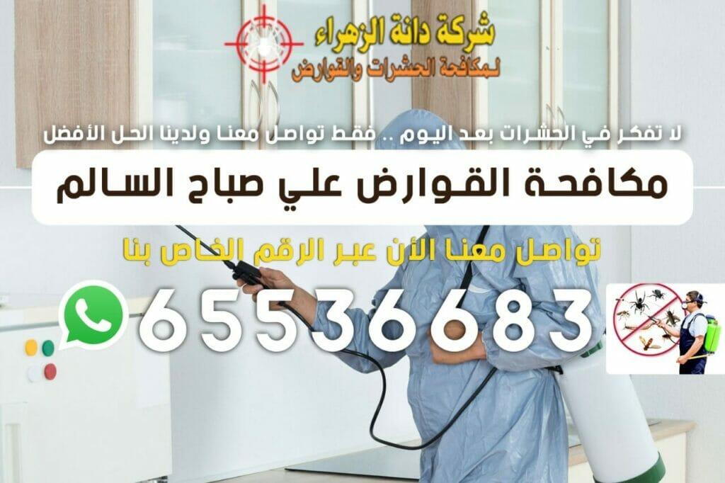 مكافحة القوارض علي صباح السالم 65536683