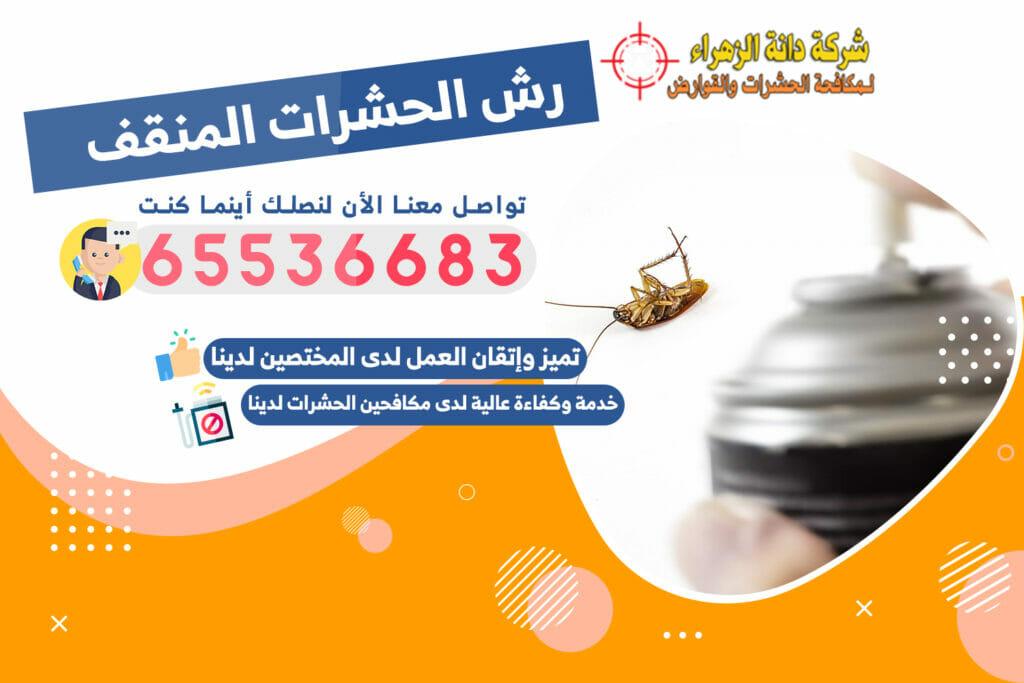 رش الحشرات المنقف 65536683