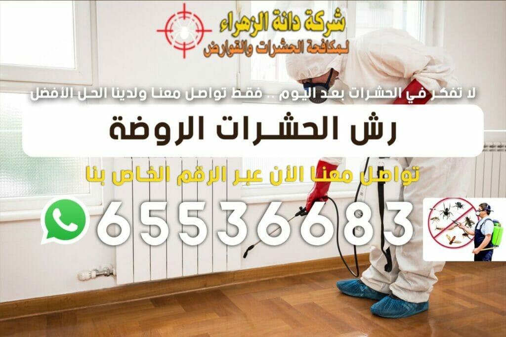 رش الحشرات الروضة 65536683