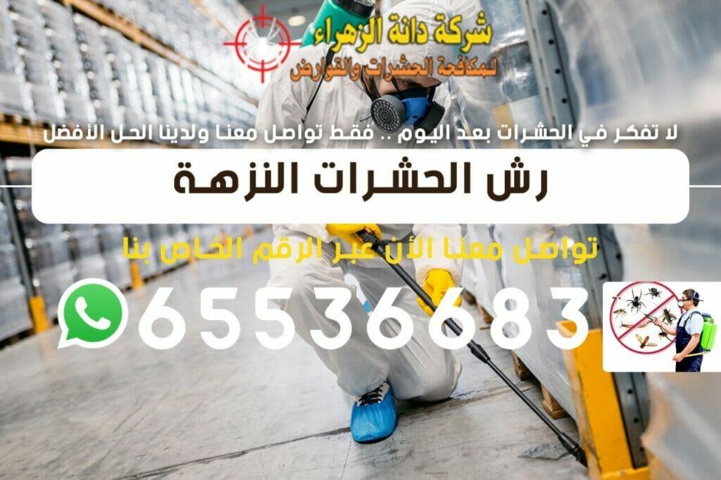 رش الحشرات النزهة 65536683