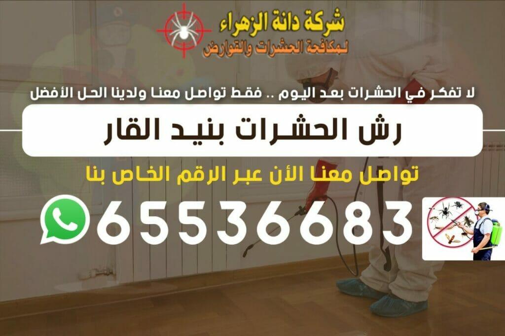 رش الحشرات بنيد القار 65536683