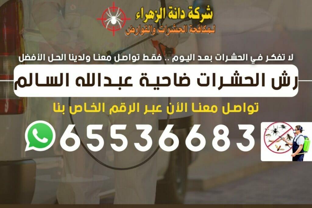 رش الحشرات ضاحية عبدالله السالم 65536683
