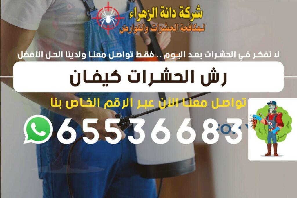 رش الحشرات كيفان 65536683