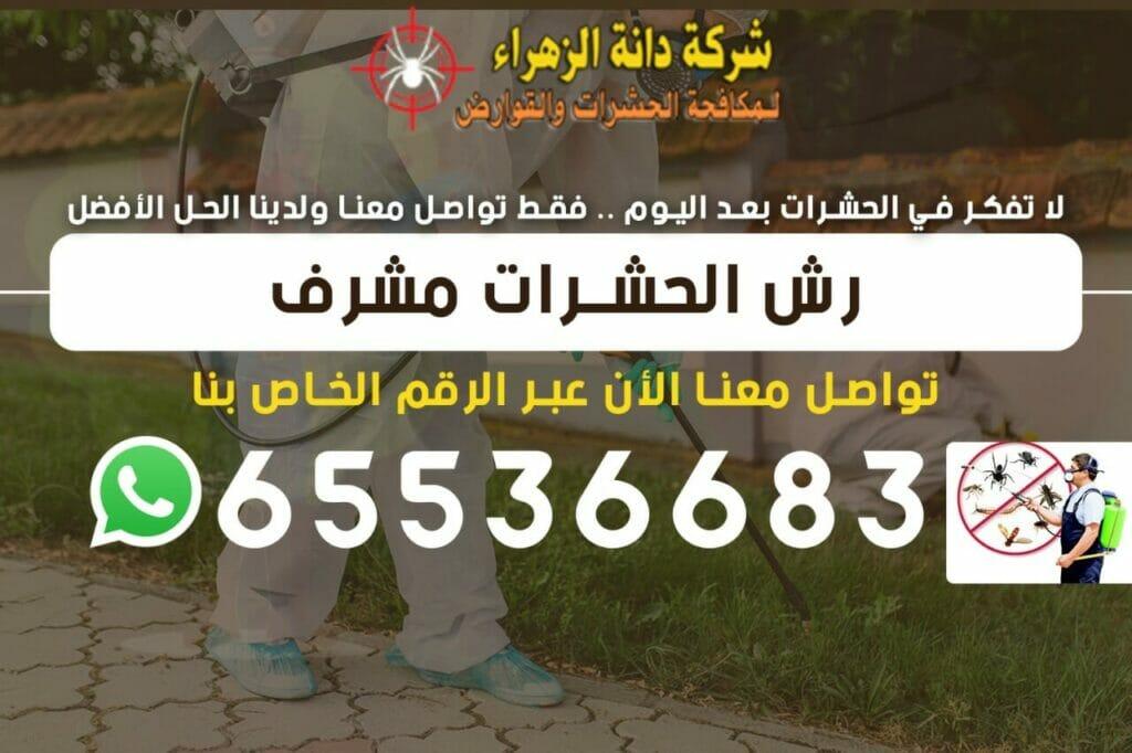 رش الحشرات مشرف 65536683