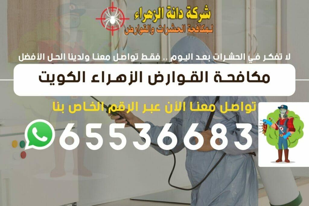 مكافحة القوارض الزهراء 65536683 الكويت