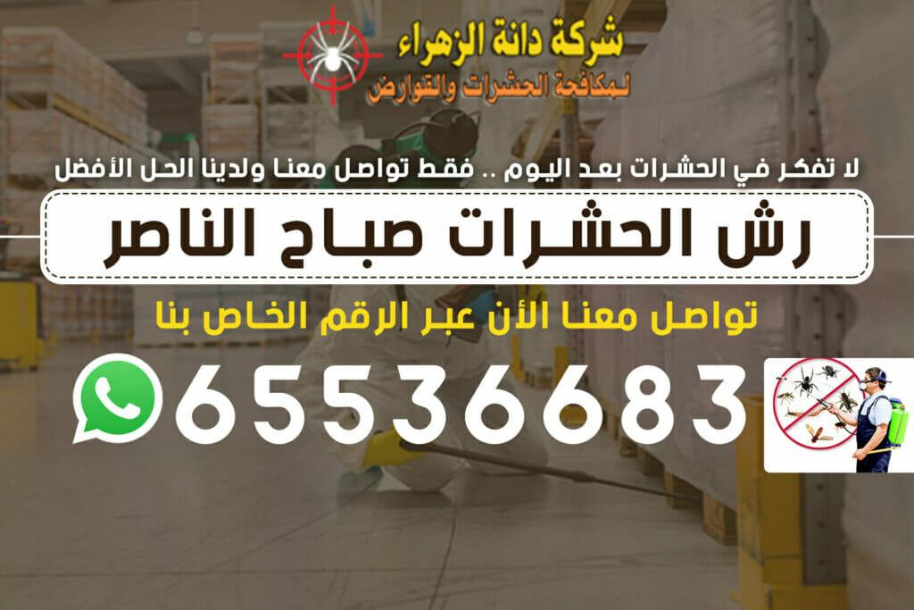 رش الحشرات صباح الناصر 65536683