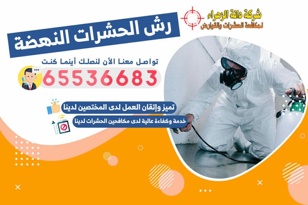 رش الحشرات النهضة 65536683