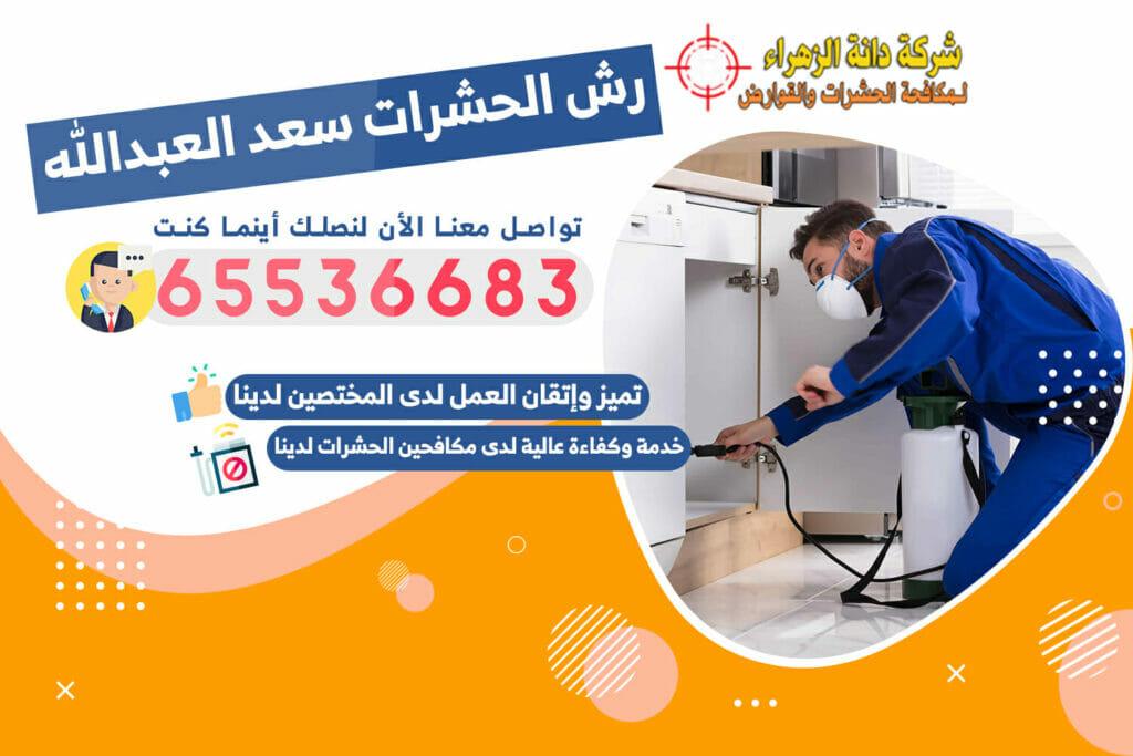 رش الحشرات سعد العبدالله 65536683