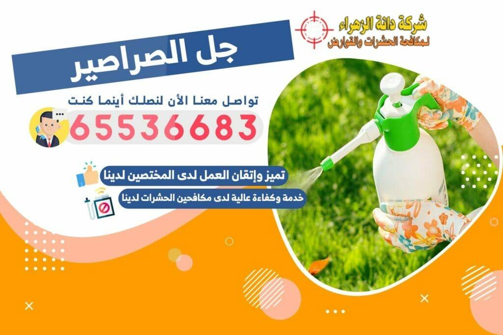 جل الصراصير | شركة دانة الزهراء لمكافحة الحشرات بالكويت