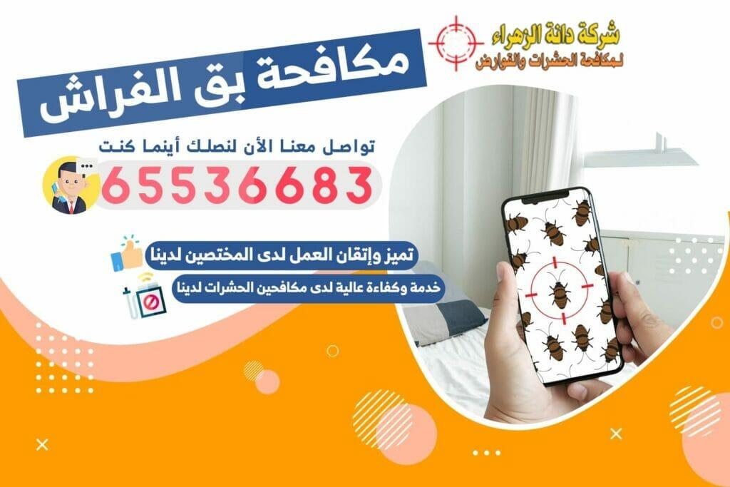 مكافحة بق الفراش | شركة دانة الزهراء لمكافحة الحشرات في الكويت